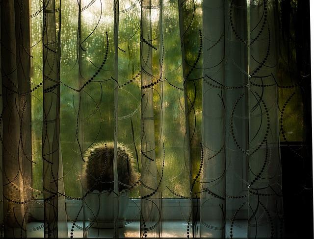 gardinbusser bringer gardiner til din bolig