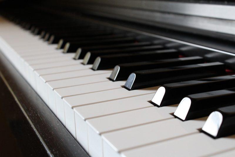 klaverstemmer søges